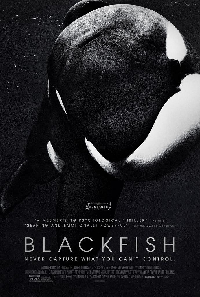 'Blackfish': The Documentary That Exposes SeaWorld - SeaWorld of Hurt