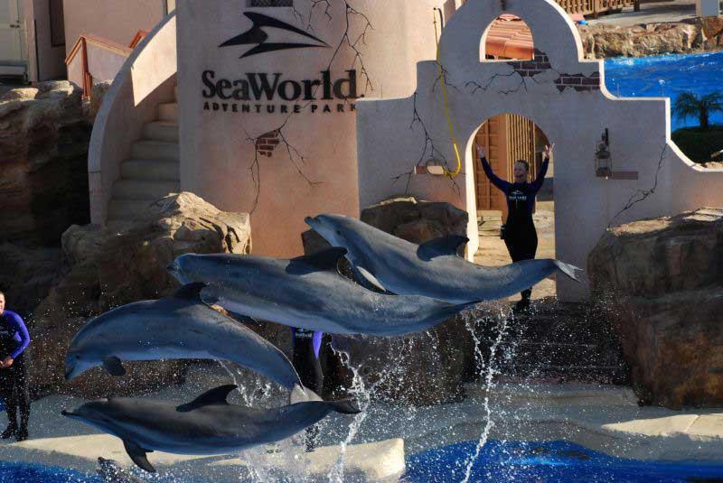 show-seaworld