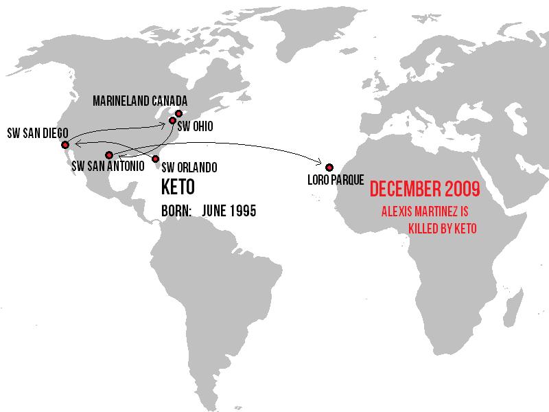 Keto's Movement