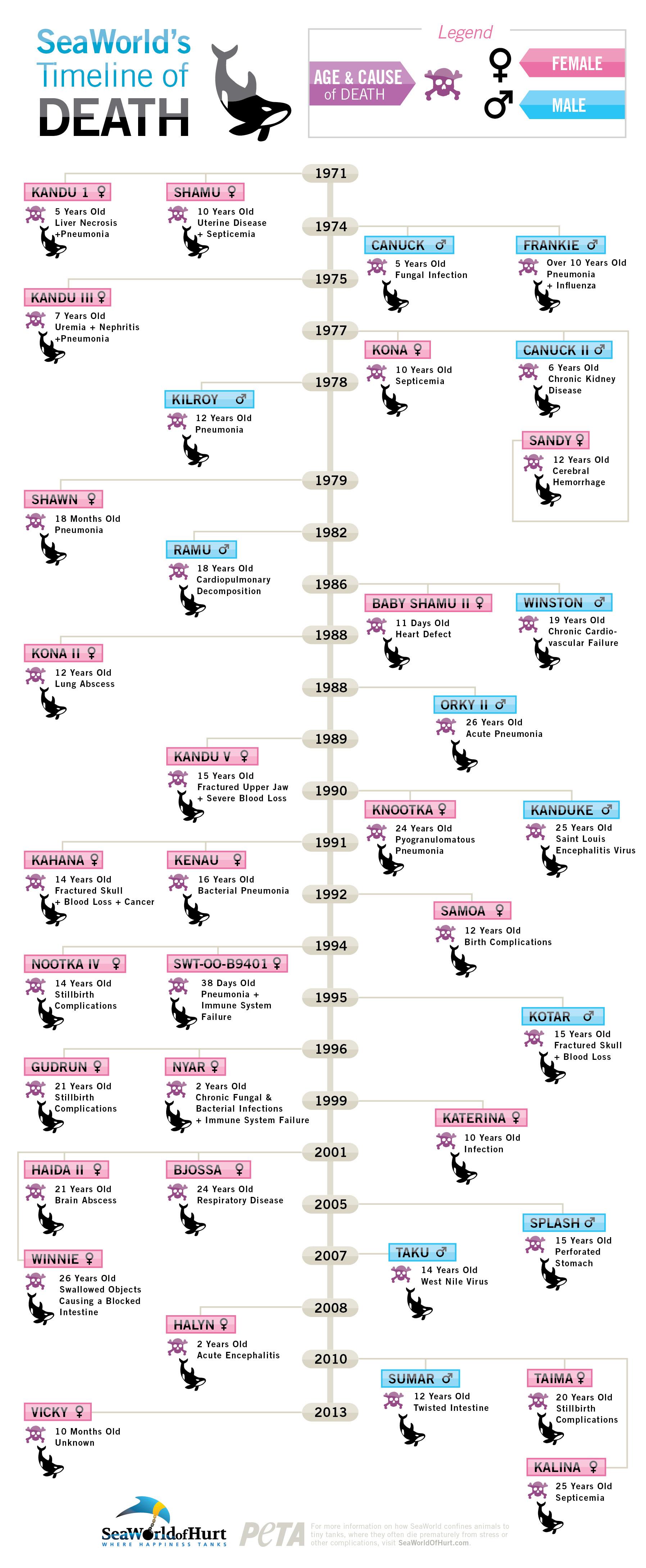 lives_stolen-infographic-1205