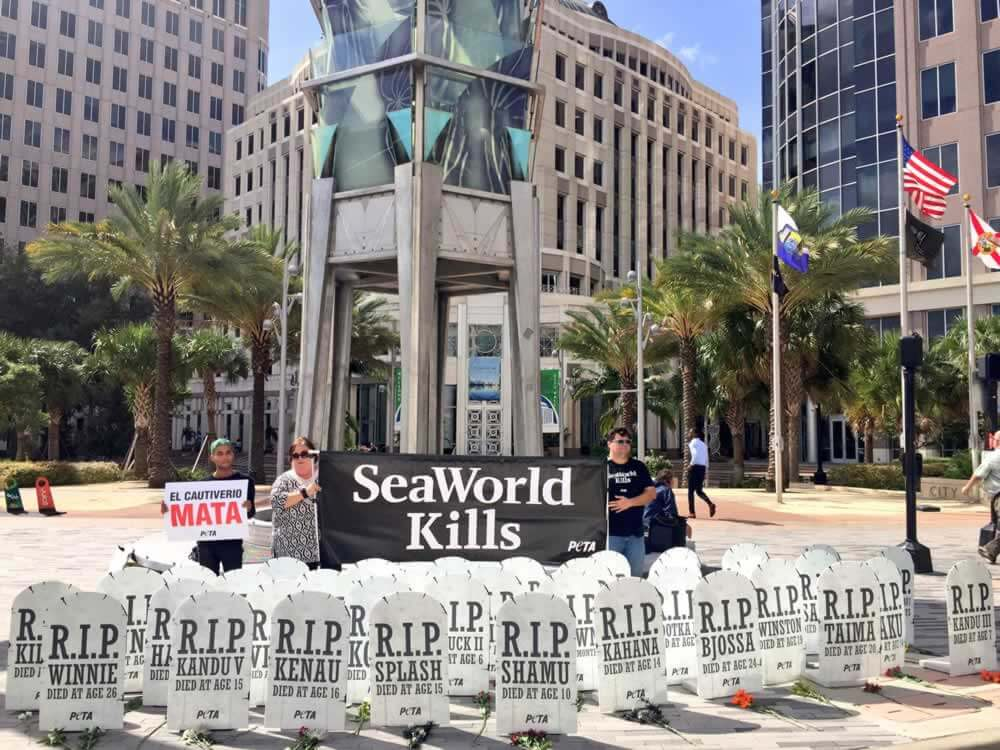 SeaWorld Orlando graveyard demo