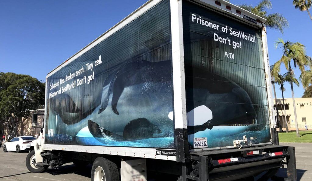 """Semi with life-sized """"orca"""" and plea not to go to SeaWorld"""